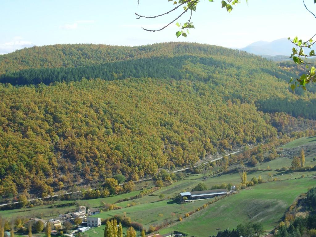 Valle Canapina - Sellano (PG)